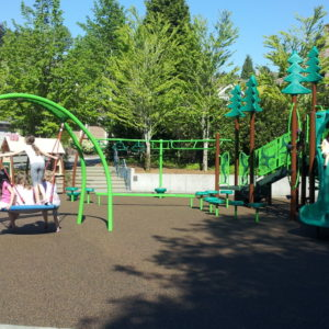 Neighborhood Playground for Small Spaces in Bellevue, Washington gallery thumbnail