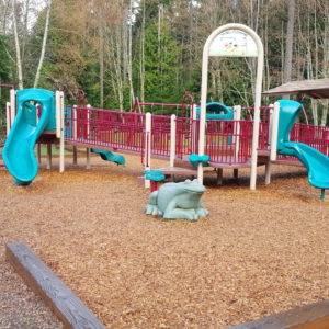 Natural Looking Playground with Earth Tones and Engineered Wood Fiber gallery thumbnail