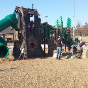 Custom Playground with Tree Spiral Slide gallery thumbnail